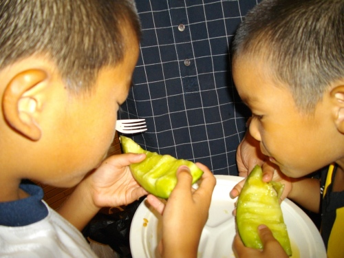 Melon_monsters